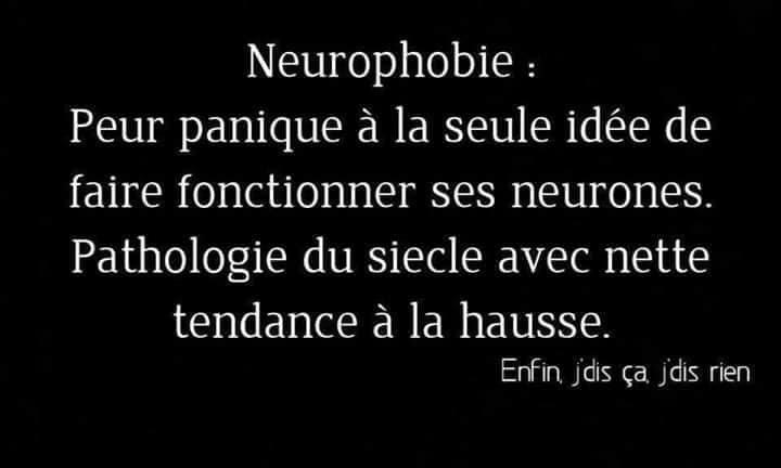 neurones.jpg